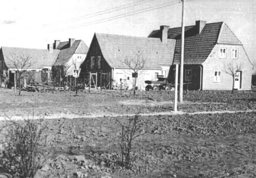 Doppelhäuser in der Roten Siedlung