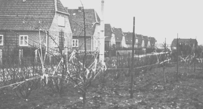 Rote Siedlung alt